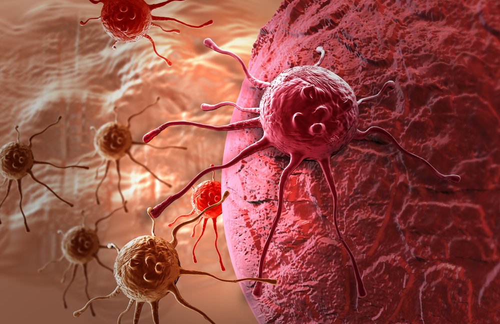 Cytotoxic T Cells Indicate Favorable Prognosis in Colorectal Cancer