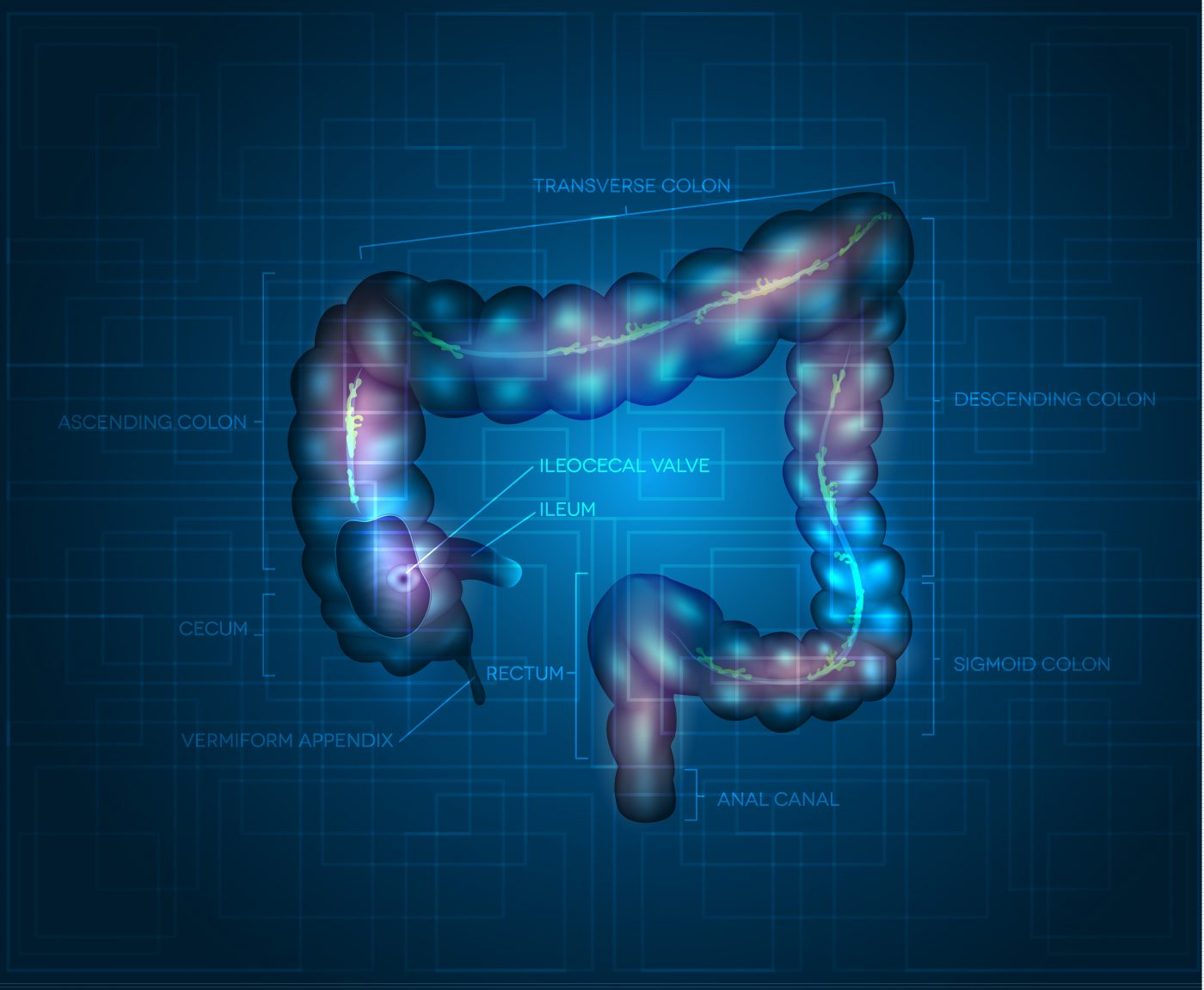 Clinical Practice Guidelines on Molecular Marker Tests for Colorectal Cancer Open to Public Comment