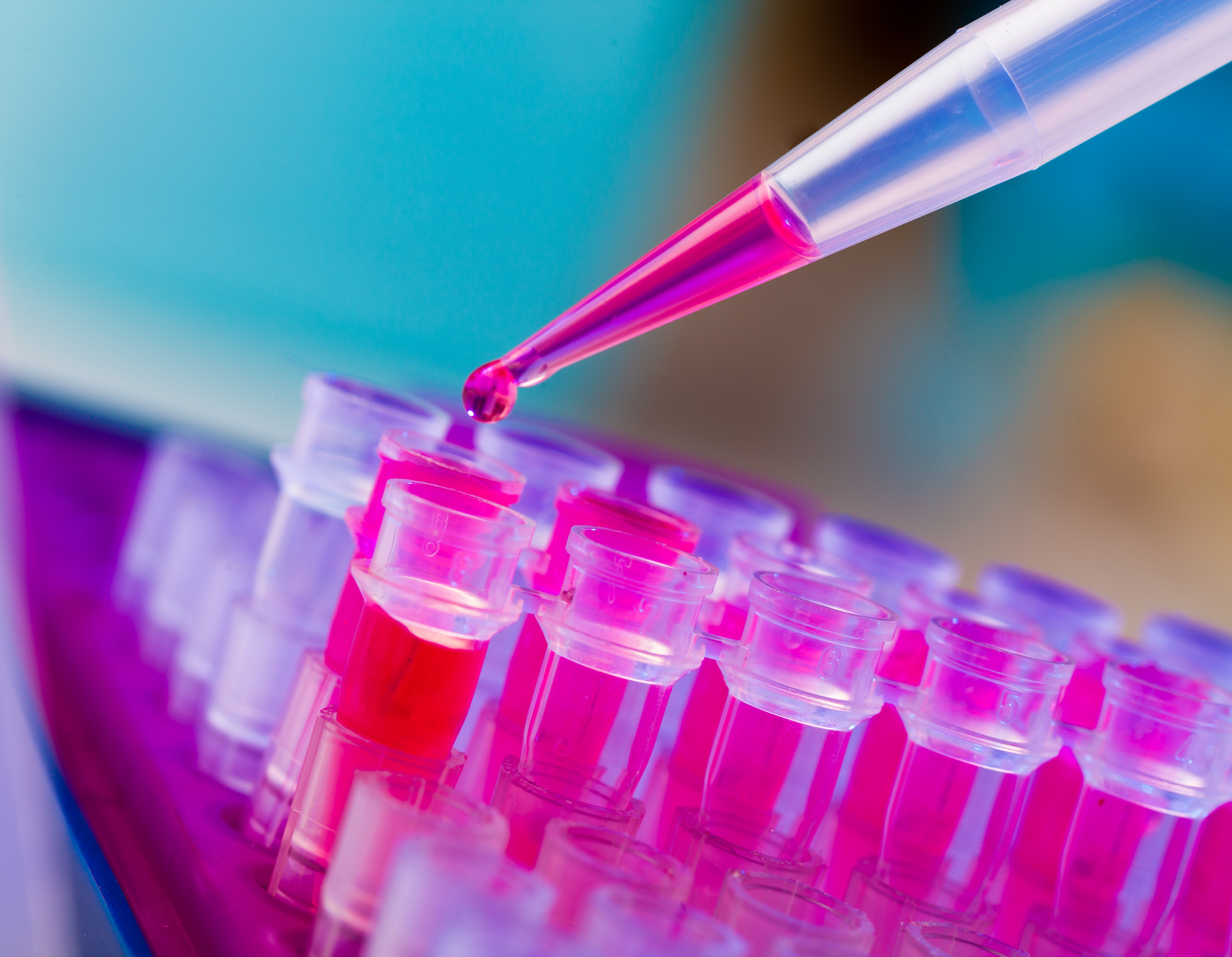 DiaCarta and University of Potsdam Collaborate on Novel Early Colon Cancer Detection Test