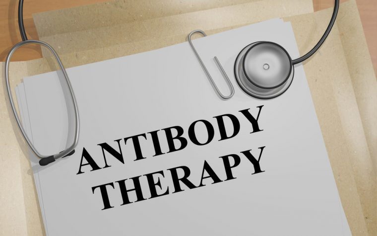 Antibody developed to fight cancers